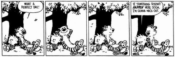 calvin-vacation-2